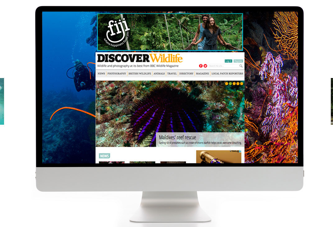 Online campaign for Fiji tourism
